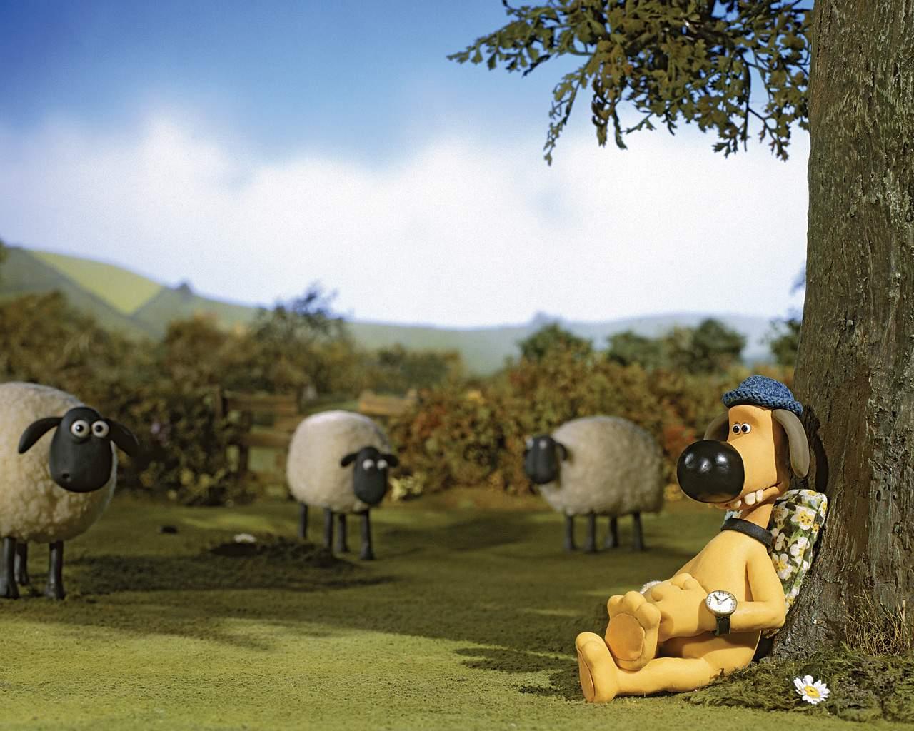 shaun si kambing, wallpaper shaun the sheep, foto shaun, kambing lucu