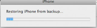 restore iPhone bookmark from backup