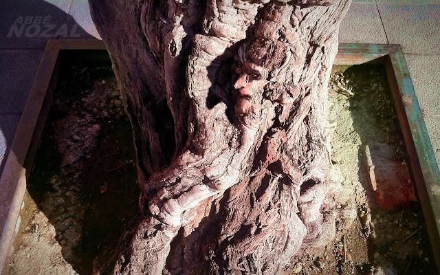 Sólo los árboles dan la cara, 2012 (cc) Abbé Nozal