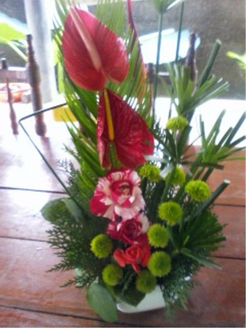 flores jardim camburi:Divina Flor!: Flores, Flores, Flores!