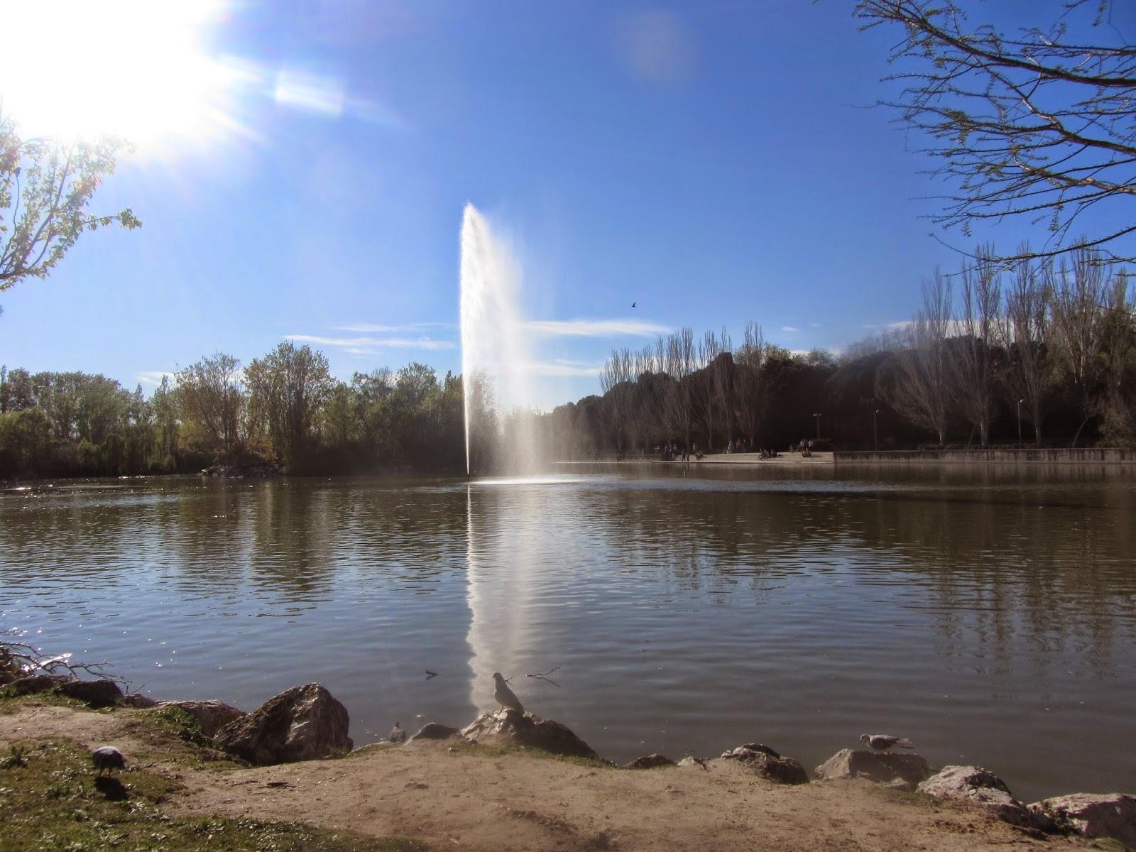 El Lago del Parque Natural El Soto está rodeado de zonas de ocio