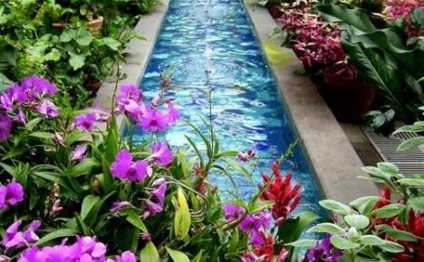 ชมไอเดียการแต่งสวนสวยด้วยดอกไม้สีม่วงมากมายหลายแบบ