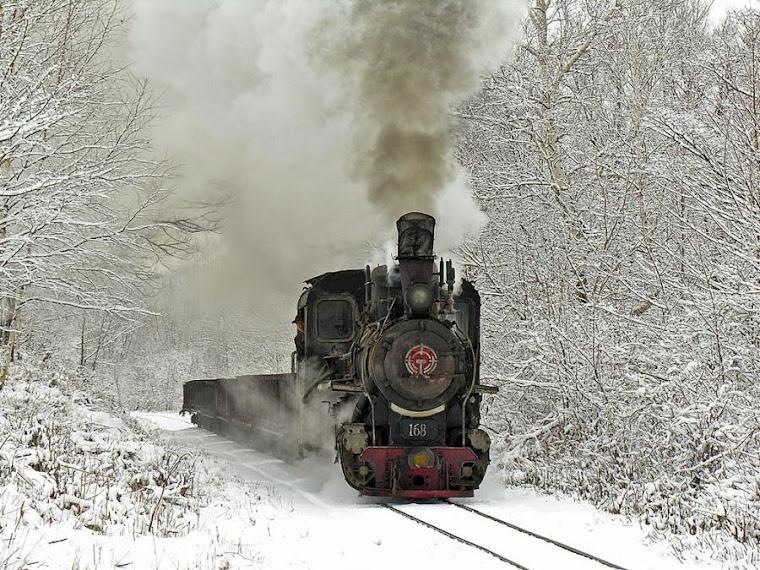 Trenul meu...