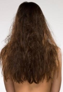 Dicas para cabelos secos