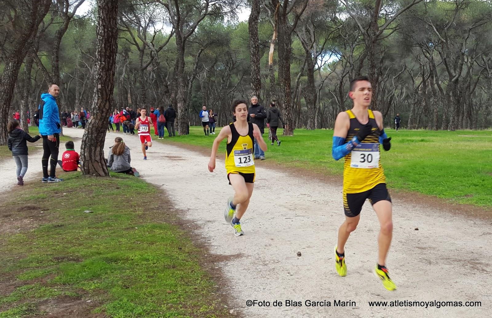 Atletismo y algo m s 11861 atletismo fotograf as y resultados cross canguro amateur - Canguro en casa madrid ...
