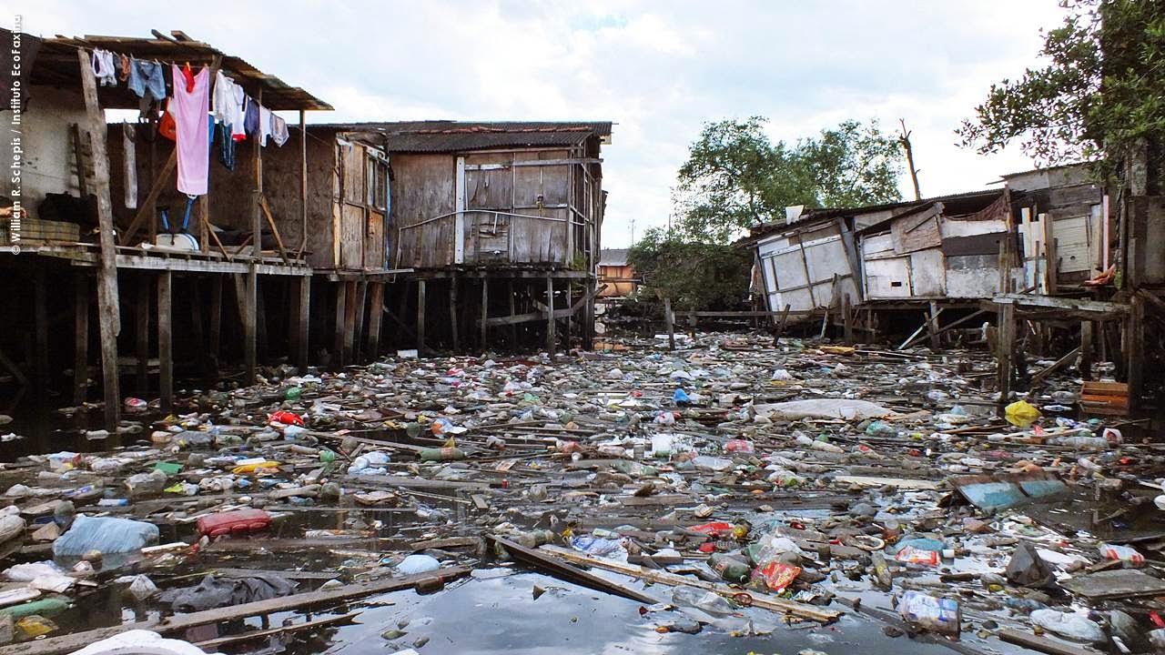 Milhares de famílias vivem em meio ao lixo e o esgoto em áreas de manguezal. Foto: Instituto EcoFaxina