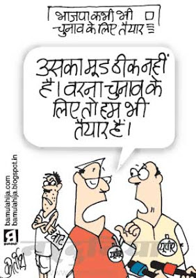 voter, election 2014 cartoons, election, bjp cartoon, nda, upa government, upa, congress cartoon, indian political cartoon