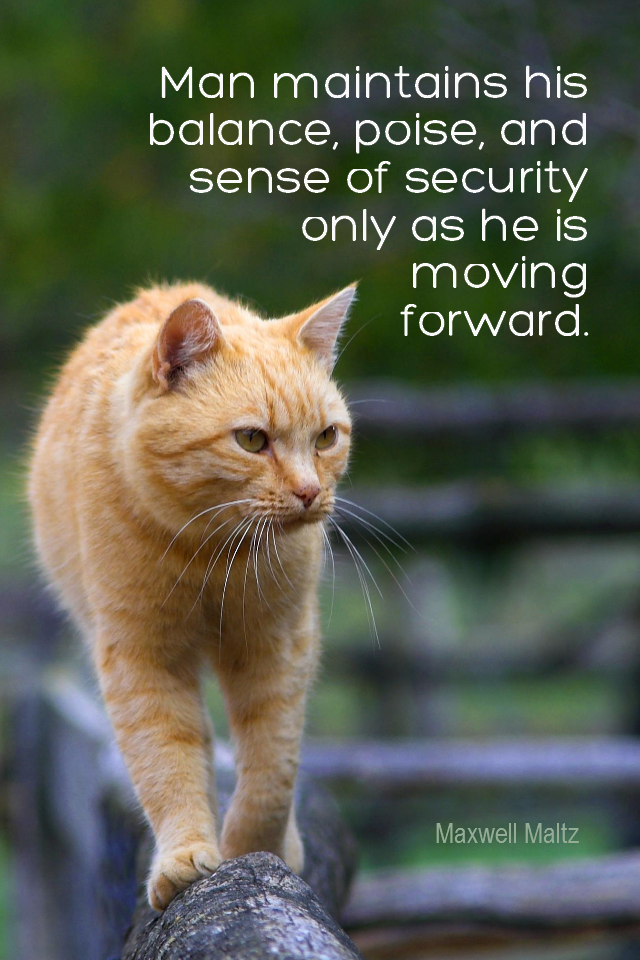 visual quote - image quotation for BALANCE - Man maintains his balance, poise, and sense of security only as he is moving forward. - Maxwell Maltz
