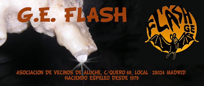 G.E. FLASH