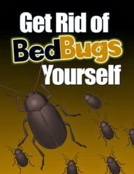 quora how to get rid of bed bug completely