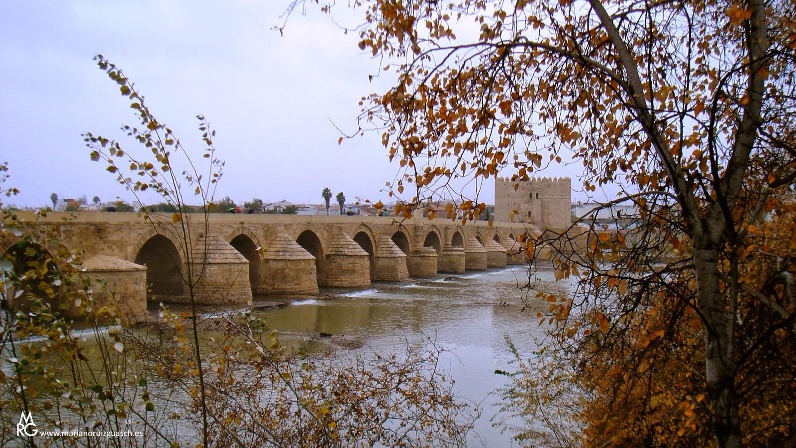 Puente Romano de Cordoba.