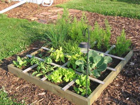 eat  grow paleo square foot gardening planning