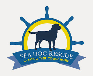 Sea Dog Rescue