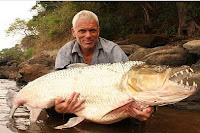 5 Monster Sungai Yg Masih Ada Saat Ini - bintancenter.blogspot.com