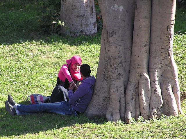 Влюбленные в парке Каира