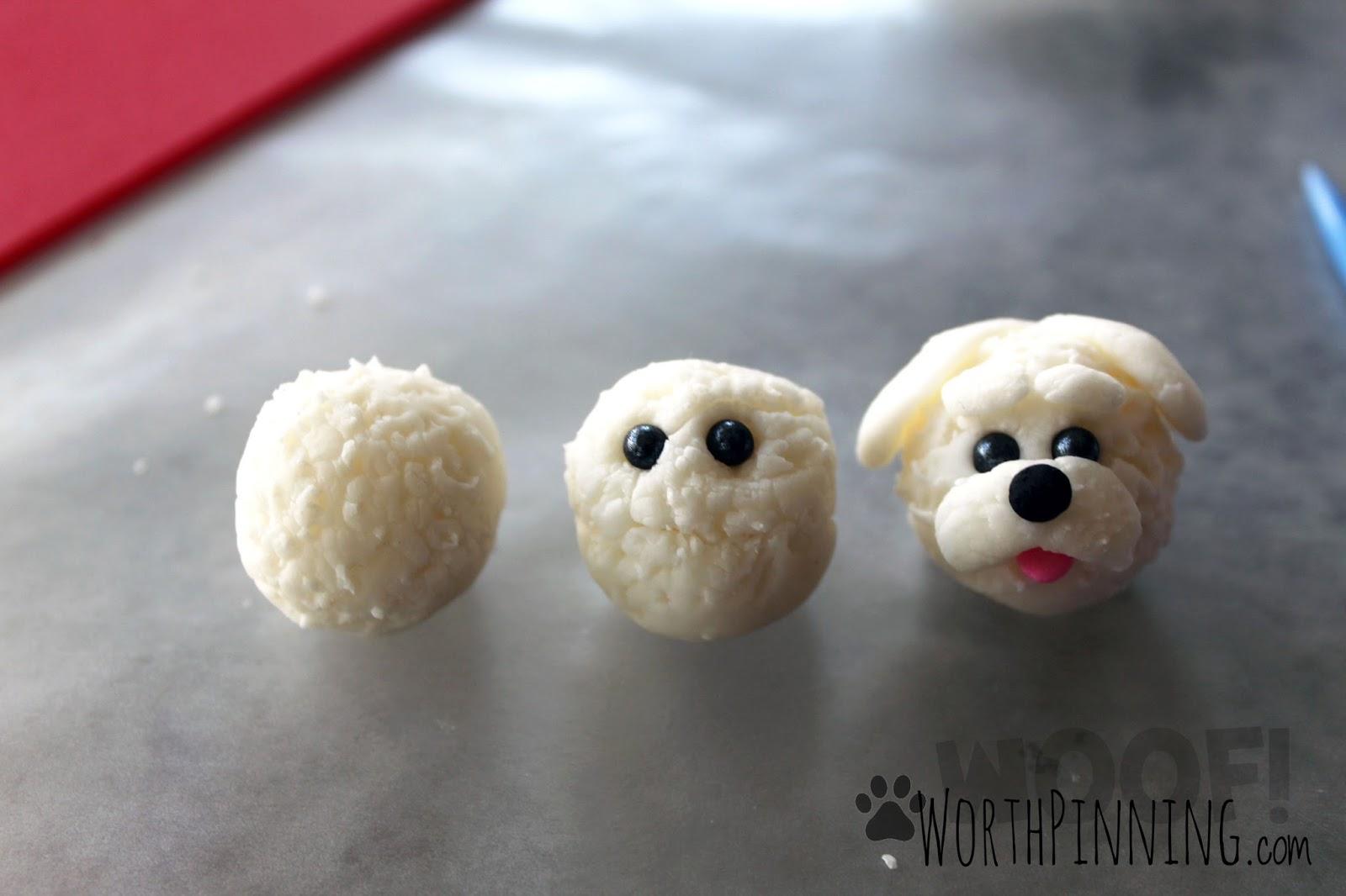 Pretty Small Dogs
