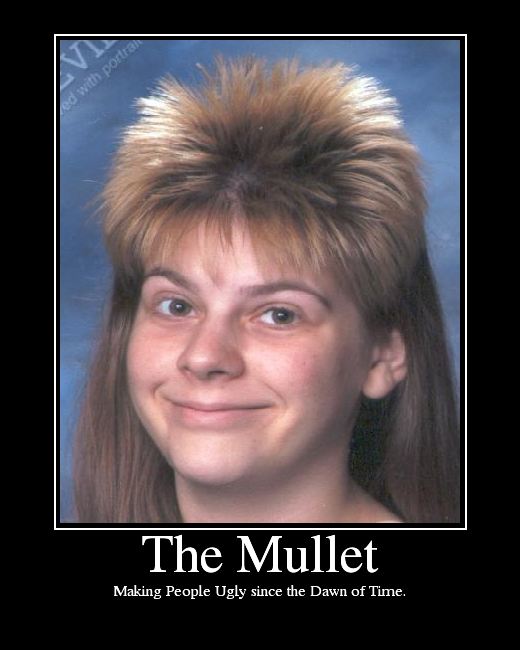 The Pwn Zone Mullets