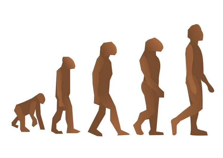 Welcome To Sze Chek S Bloggie Talking Bout Human Evolution