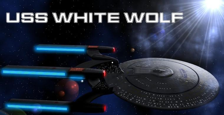 Relato: USS White Wolf