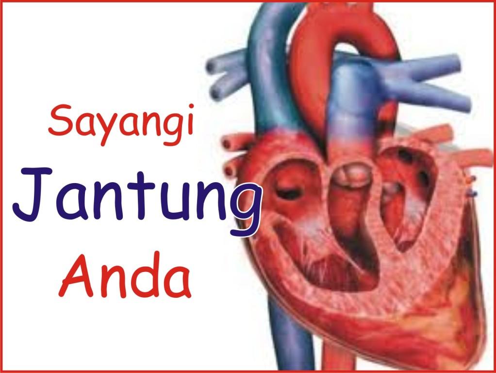 www.penyebab penyakit jantung