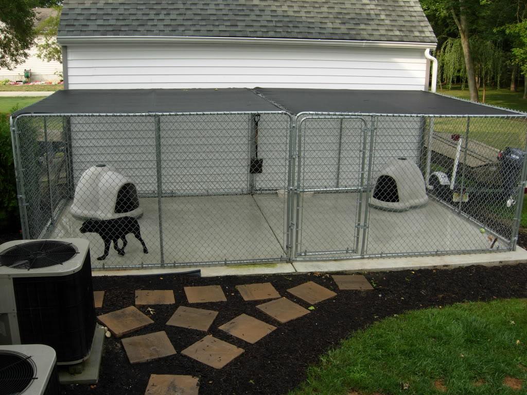 the real apbt kennel setups dog house setups