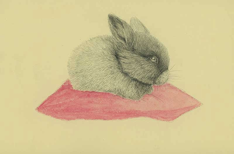rabbit red cushion - yara dutra