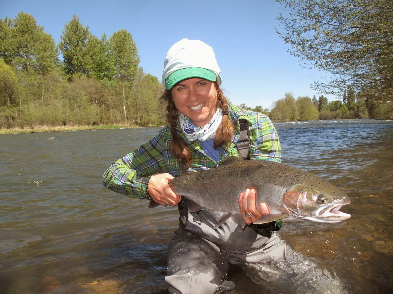 Bent winter steelhead fishing rogue river for Winter steelhead fishing