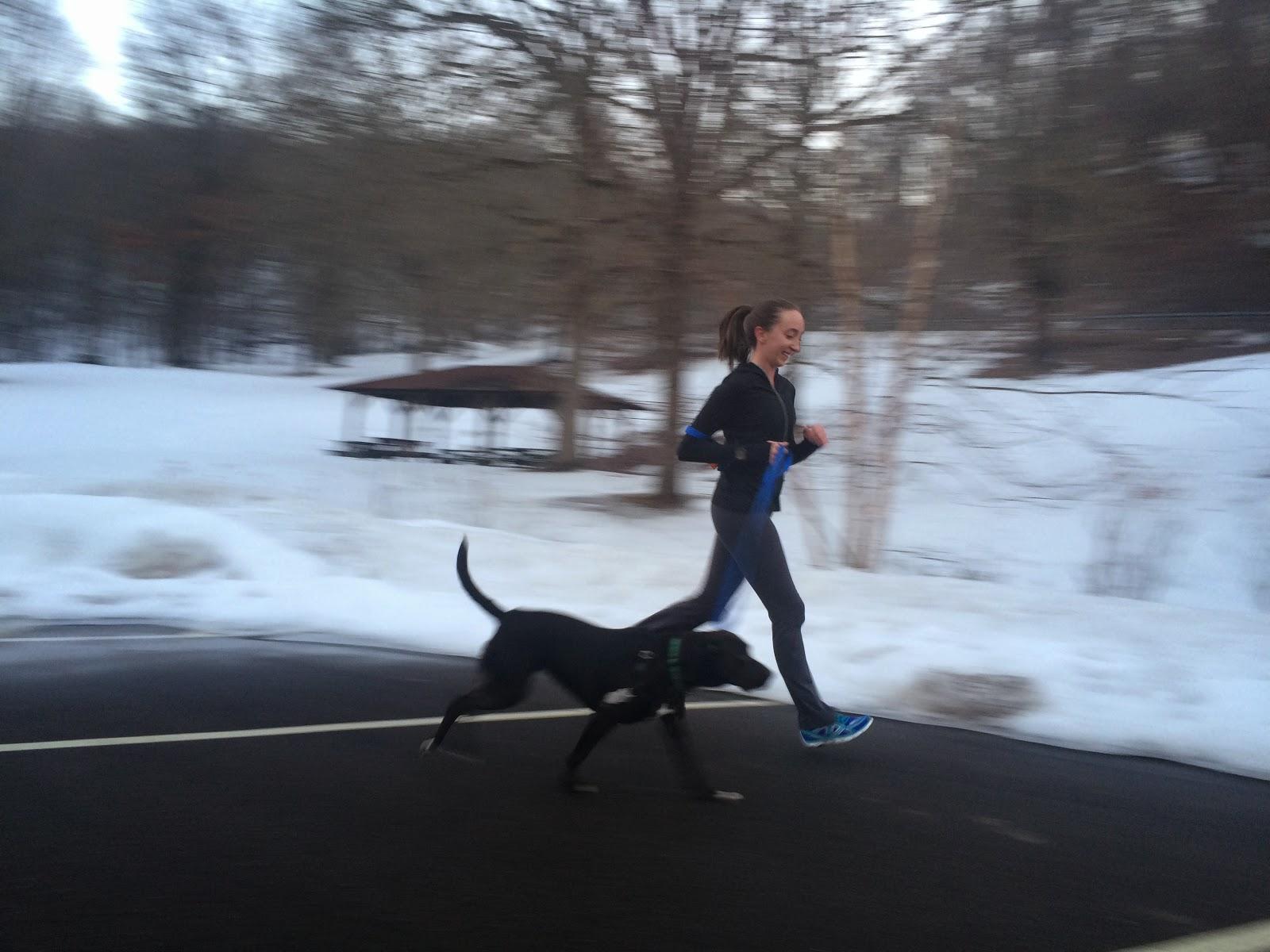 dog running partner