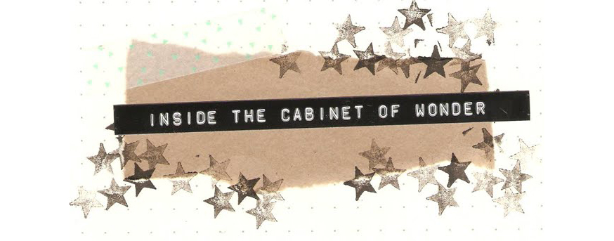 Inside the Cabinet of Wonder