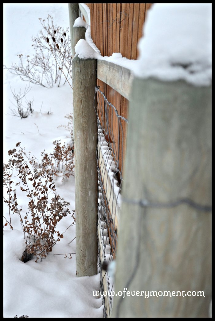 Snow covering a fence post in Montana