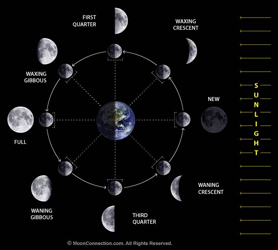 lunar phases diagram the cool science lunar phases misconceptions