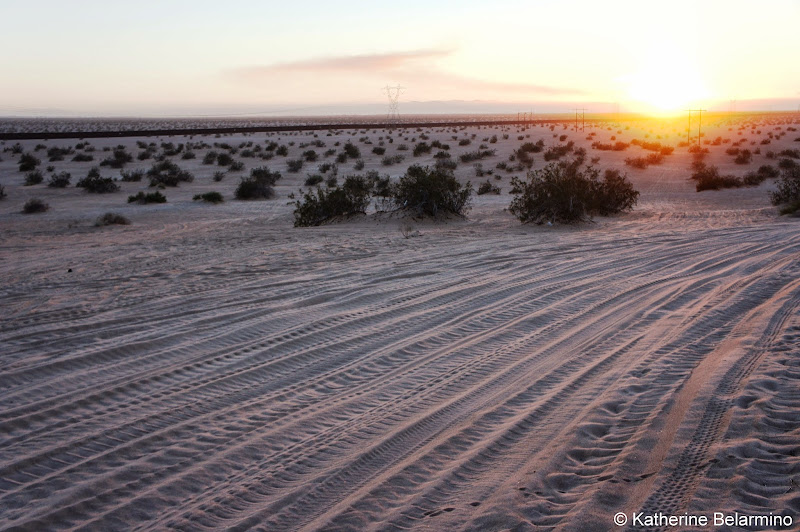 Imperial Sand Dunes Recreation Area Near Plank Road