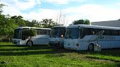 Os ônibus.