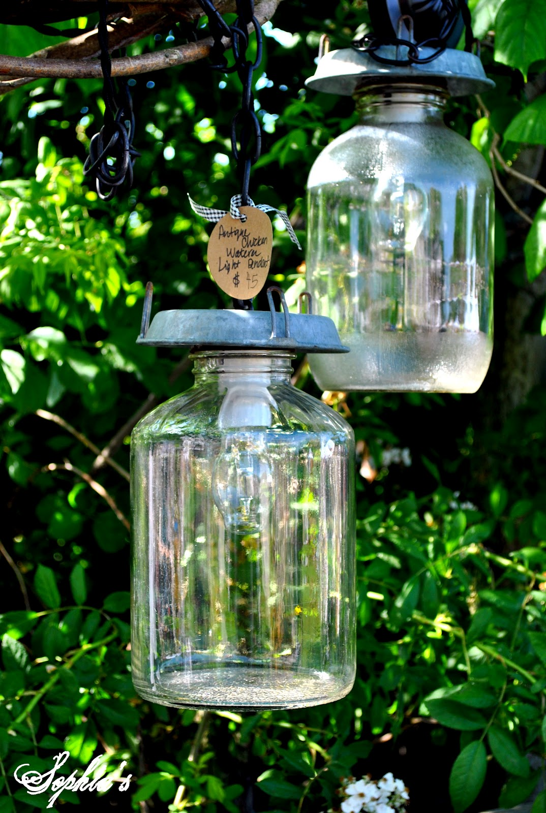 Sophia 39 s furniture and diy project gallery for Diy chicken feeder light