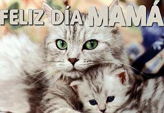 Feliz Dia Mama, parte 3