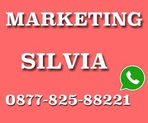 sales marketing silvia