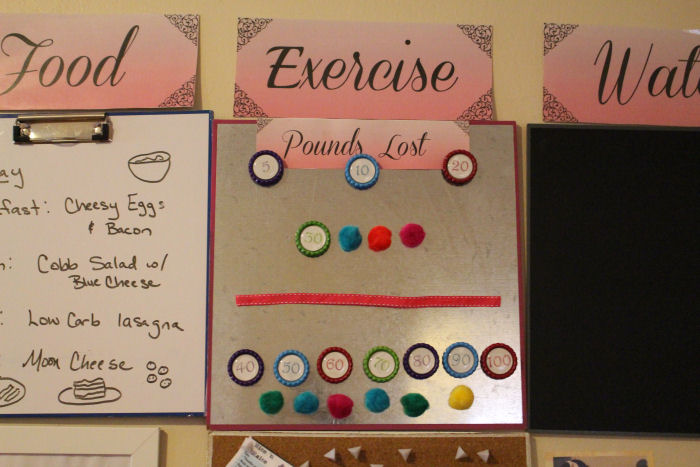 diy weight loss tracker magnets first time mom and losing it