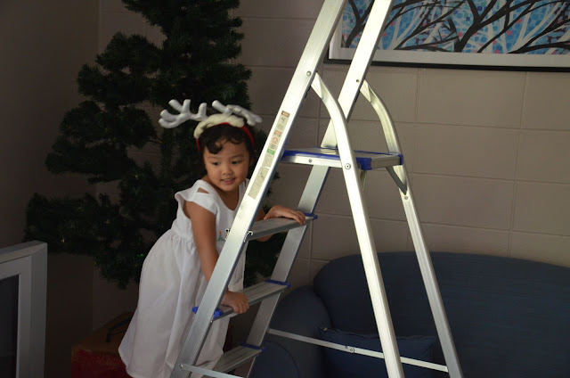 Kecil climbing latter in front of the tree