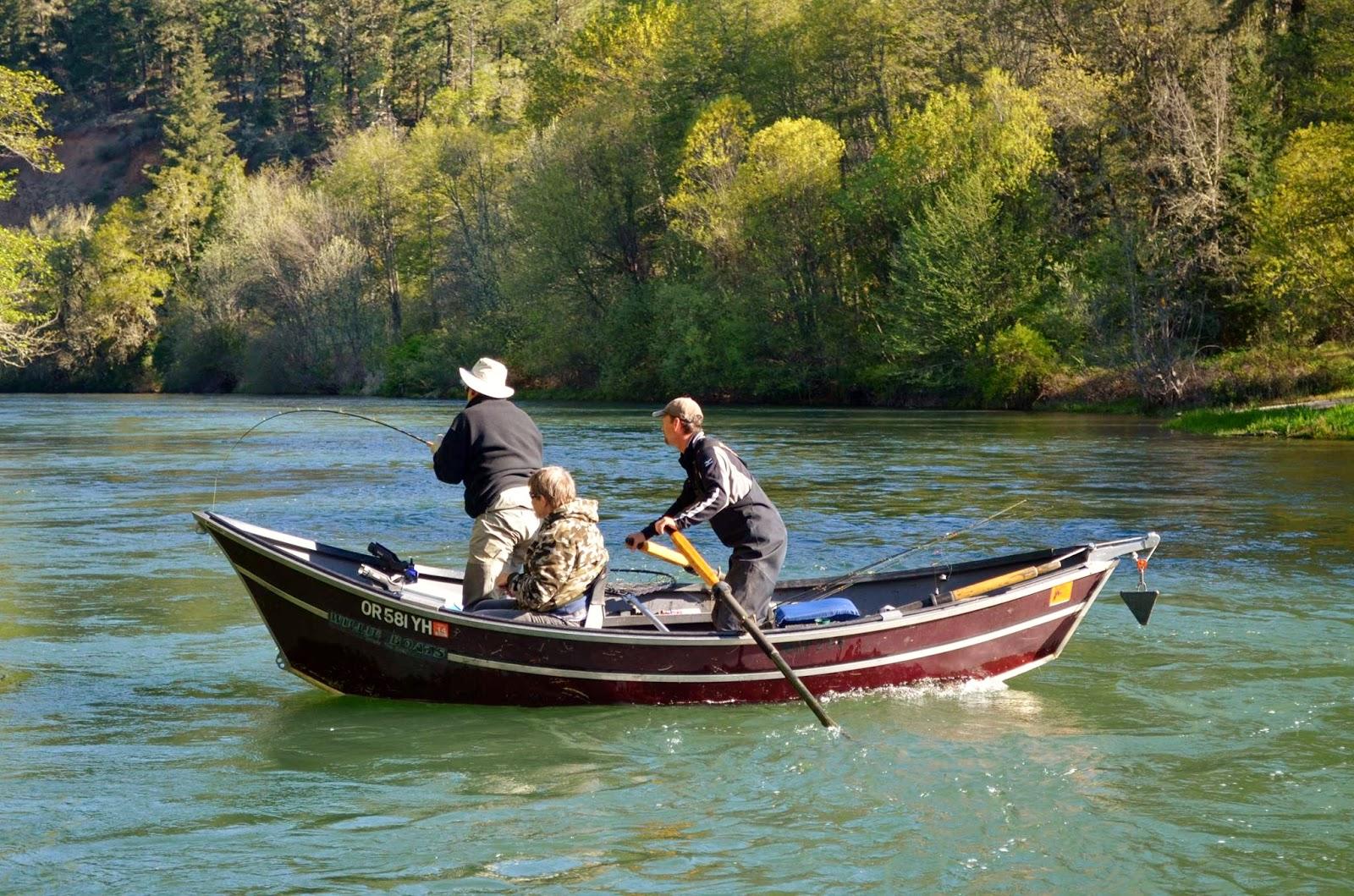 Rogue river salmon steelhead fishing guides rogue river for Rogue river fishing guides