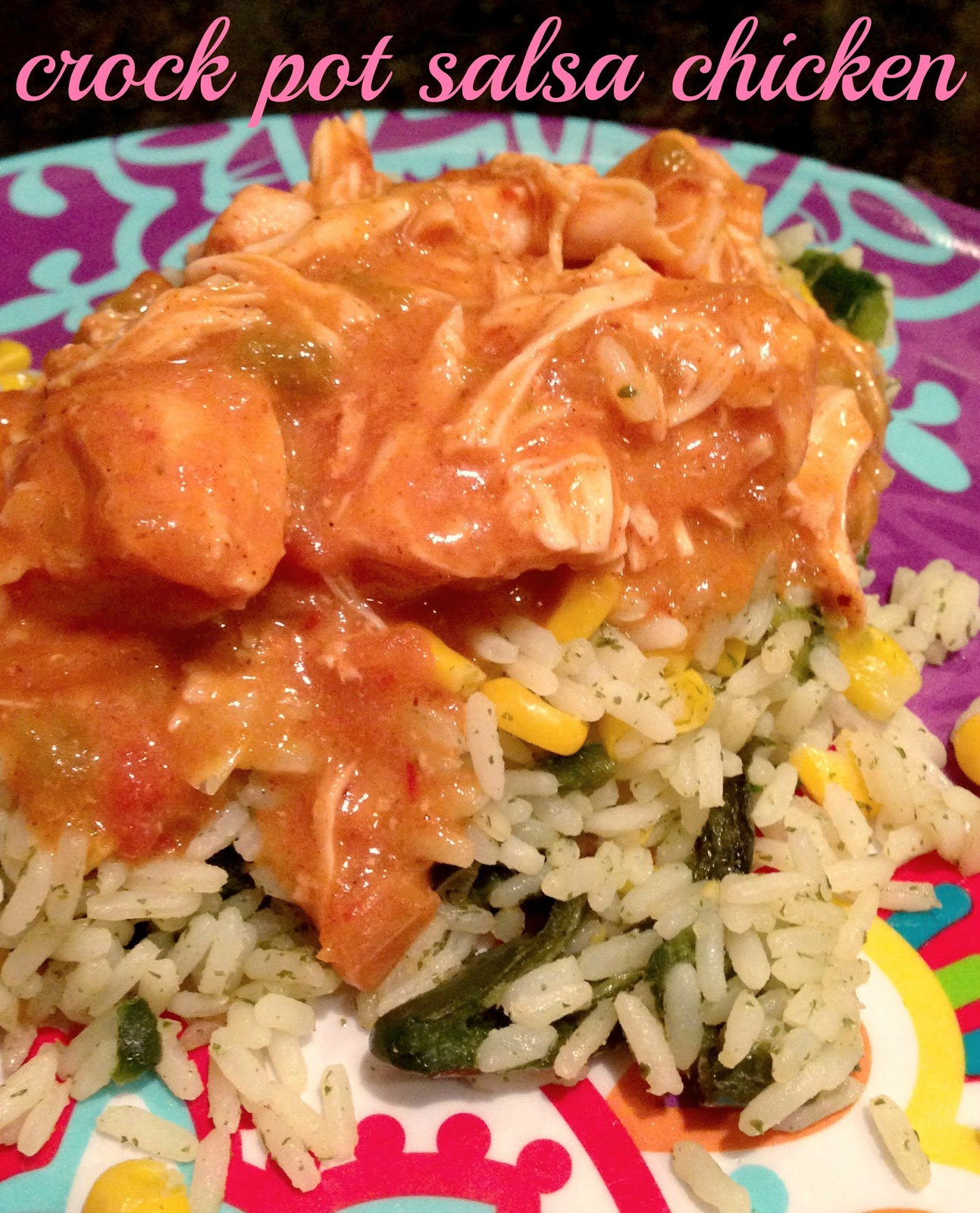 Dec 06, · Season the chicken with adobo (or salt), garlic powder and cumin then place in the slow cooker and top with salsa. Cover and cook LOW for 6 hours. Top with cheese, cover and cook until melted, about 5 minutes.5/5(50).