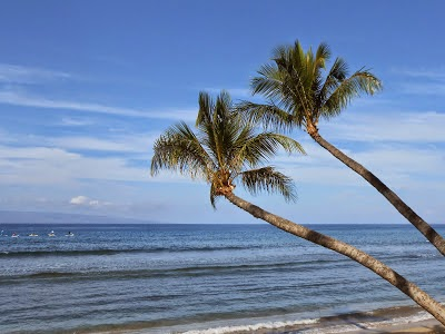 Social Media Consulting - Aloha 'Ike Maka