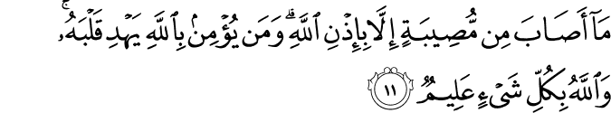 Surat At-Taghabun Ayat 11