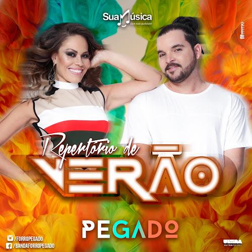 CD Forró Pegado Repertório de Verão 2k16