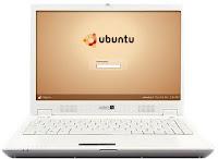 Linux для настольных ПК – несбывшаяся мечта Netbook