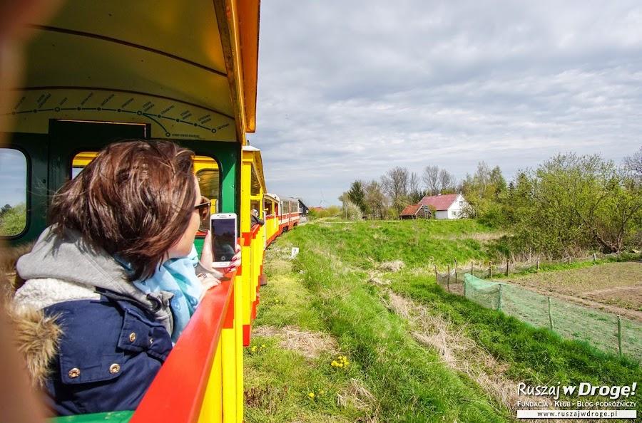 Żuławską Kolejką Dojazdową z Nowego Dworu Gdańskiego do Stegny