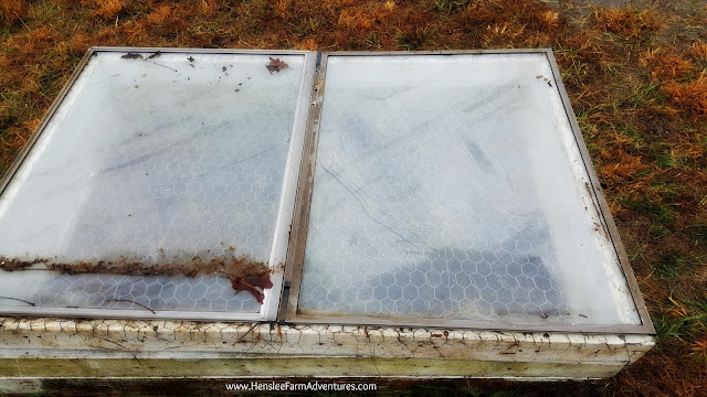 Gardening in Winter: A Cold Frame Story www.hensleefarmadventures.com