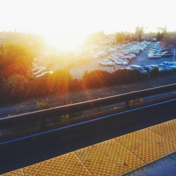 Bayfair Bart // At Sunset