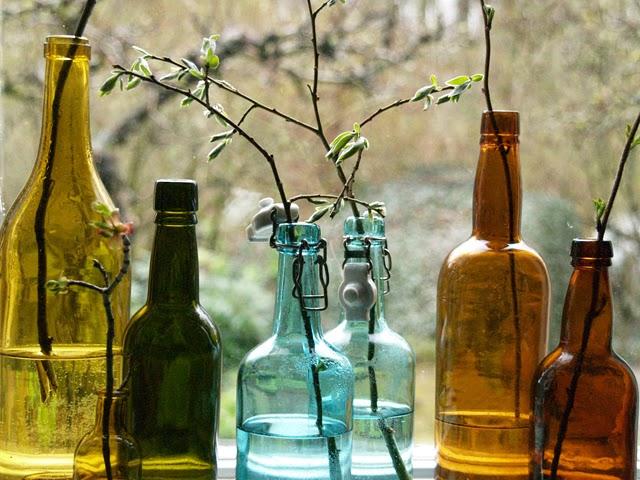 Drivna kvistar i flaska. Foto: Anette Brunsell för blogg Rost och Rädisor