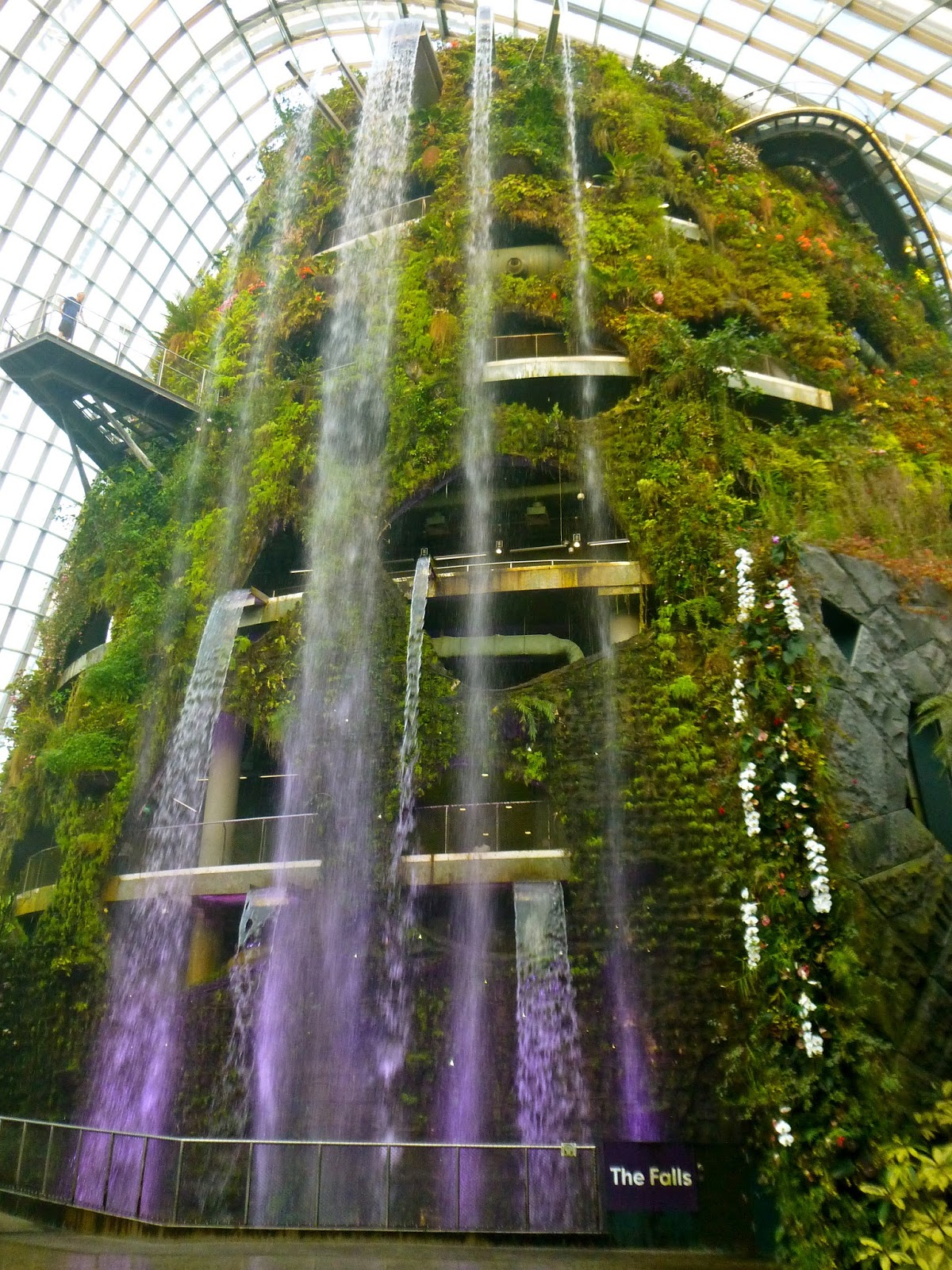 Singapore gardens and a night at the Marina Bay Sands