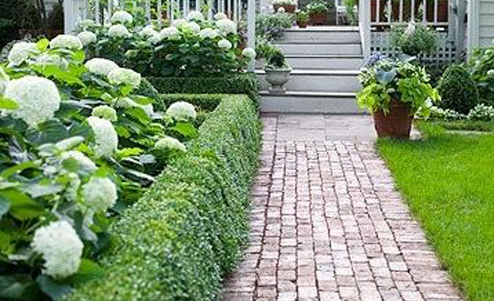 Front yard hedge ideas native home garden design for Mini garden landscape
